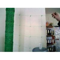 China Plant Support Net, Garden Netting on sale