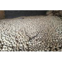 Good Chemical Stability High Alumina Ball / Refractory Ceramic Balls Manufactures