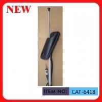 1M 2 Section AM FM Car Antenna With Stainless Steel Mast For Pickup Truck Manufactures