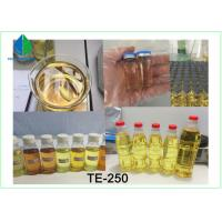 High Purity Testosterone Enathate Muscle Building Steroids Yellow Liquid for Cutting Manufactures