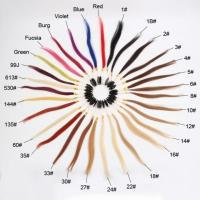 China Hair Extension Color Wheel, 20 CM 31 Colors Hair Extension Color Wheel For Sale on sale