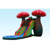 Amazing Special 23Ft Mushroom Inflatable Water Slides With Small Pool For Party Manufactures