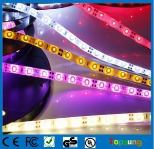 China Low voltage 12v SMD led strip light 60leds/m on sale