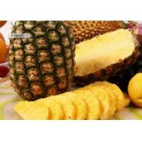 Baking Bacterial Protease Enzyme Pineapple - Derived For Meat Tenderizing Manufactures