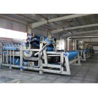 China Vegetable and Fresh Fruits Washing Processing Machine For Juice Production Plant on sale