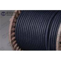 MMO/Ti Flexible Anode And Conductive Polymer Anode  For Tank Bottoms Manufactures