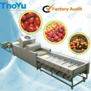 Orange sorting machine sort machine of orange size&weight Manufactures