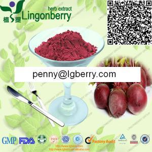Red Beet Juice Powder Manufactures
