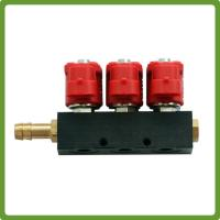 CNG LPG gas Injector Rail for 6 cylinder Sequential Injection System Common Rail Manufactures