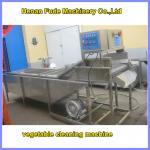 mushroom cleaning machine , vegetable washing machine Manufactures