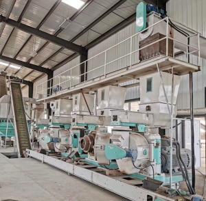 China Horizontal Wood Waste Pine Material Pellet Production Line Pellet Makine on sale