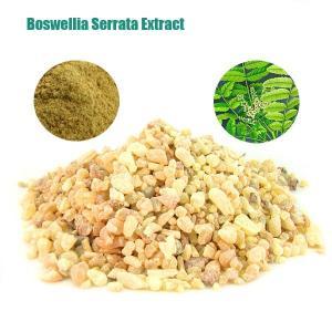 Boswellia Serrata Extract,Herbal Extract,Boswellic Acid 65%min,Yellow color Manufactures