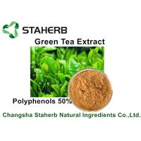 Yellow Brown Powder Natural Plant Extracts Green Tea Extract Polyphenols 50% By HPLC Manufactures