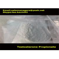 Cas 57-85-2 Muscle Growth Steroids Testosterone Propionate Powder / Test Propionate Manufactures