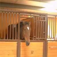 China Bamboo Board Metal Horse Fence Stable Panel With Durable Sliding Door on sale