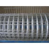 China Large - Diameter Welding Wire Mesh , Silver Hotdipped Galvanized Welded Wire Mesh on sale