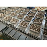 China High Efficiency Automatic paper pulp egg carton tray making machine on sale