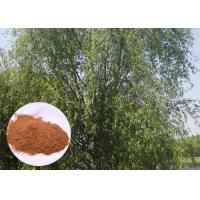 Salicin 98% Antifungal Plant Extracts White Willow Bark Extract Relieving Headache Manufactures