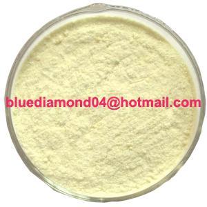China Icariin/ Horny goat weed/ Epimedium on sale