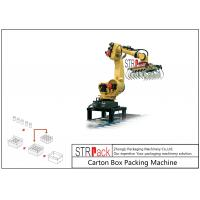 Automatic Carton Robot Palletising System For Industry Food Chemistry Stacking