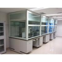 Durable Table Type Laboratory Fume Hood , Suitable For Central Station Fume Hood Manufactures