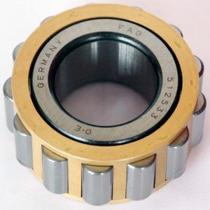 RN205M Eccentric Bearing Manufactures