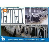 1050mm Height Locking Feed Barriers for 8 Cattle in Pasture Manufactures
