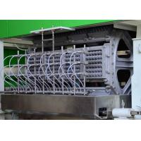 Auto Recycling Paper Egg Tray Machine , Fruit tray / Egg Carton Pulp Moulded Machinery Manufactures