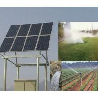 China Solar Pump for Agriculture on sale