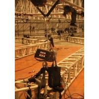 Directly Control Motor Chain Hoist D8 Standard With 320 kg Loading Capacity Manufactures