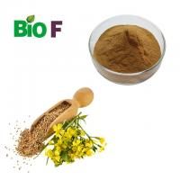 Natural Powdered Herbal Extract Mustard Seed Extract Powder With Wholesale Price Manufactures