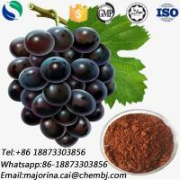 Grape Seed Extract for Food Additive Skin Whitening CAS 84929-27-1 Manufactures