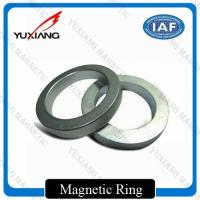 Ring Shape Neodymium Permanent Magnets N35 - N52 Performance Grade For Microphone Manufactures