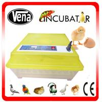 Full automatic digital small incubator for parrot egg hatching VA-48 Manufactures