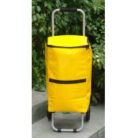 China Cooler Shoppingbag trolley on sale