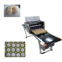 Multiple Nozzle High Resolution PrinterFor Food Industry , Egg Date Stamp Machine Manufactures