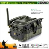 Hidden Camo MMS Trail Camera For Wildlife Hunting Game, Excellent Quality With SMS Remote Alarm Systerm Manufactures