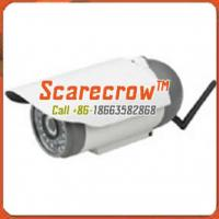 Quality Wireless microwave camera Waterproof infrared night vision wireless ip camera Scarecrow™ for sale