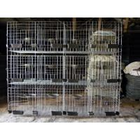 H Type Pigeon Cage Hot Sale in Saudi Arabia Market Manufactures