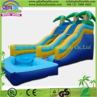 Commercial Giant Inflatable slide/inflatable big slide Manufactures