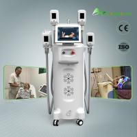 Freezing cryolipolysis fat freeze body slimming machine for home use Manufactures