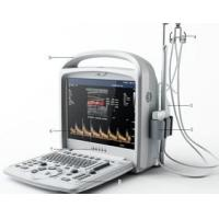 High-Tech Portable Color Doppler Ultrasound System Digital With 3D / 4D Software Manufactures