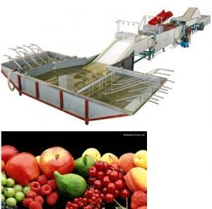fruit washing and wax-polishing machine Manufactures