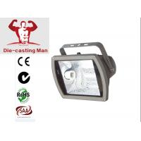 Outdoor E27 HID Flood Lights Low Voltage Landscape With IP65 Manufactures