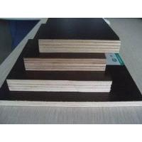 Film-faced Plywood Manufactures