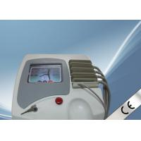 100mw Pianless Red Lipo Laser Slimming Machine Laser Belly Fat Burning Equipment Manufactures
