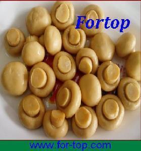 China Canned White Mushroom in Brine on sale