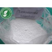 Powerful Steroids Hormone Testosterone Enanthate for Bodybuilding Cas 315-37-7 Manufactures