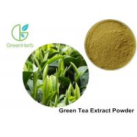 Health Product 98% Polyphenol Pure Green Tea Extract Catechin 70% / EGCG 50% Manufactures