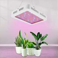 Quality 2019 new model Dual Chip 1200w led grow light full spectrum led plant light for indoor growing for sale